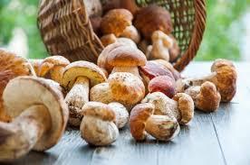 cestino con funghi porcini