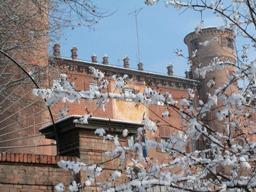 Foto Castello Reale sotto la neve