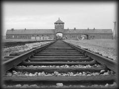 Campo di sterminio Auschwitz