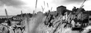 foto in bianco e nero del Castello